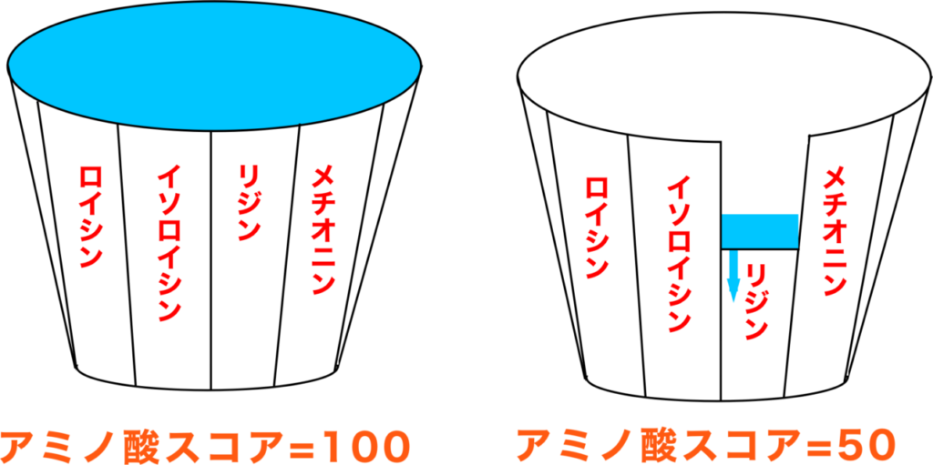 アミノ酸スコア